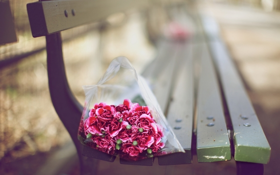bunch-of-red-rose-pictures-hd