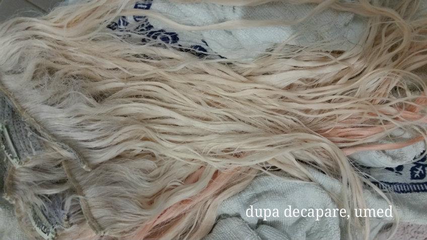 Cum Să ți Faci Blond Gri Argintiu Sigina