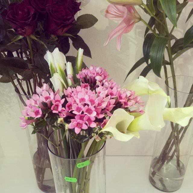 floraria florista (4)