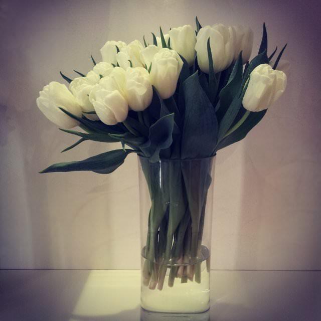 floraria florista (7)