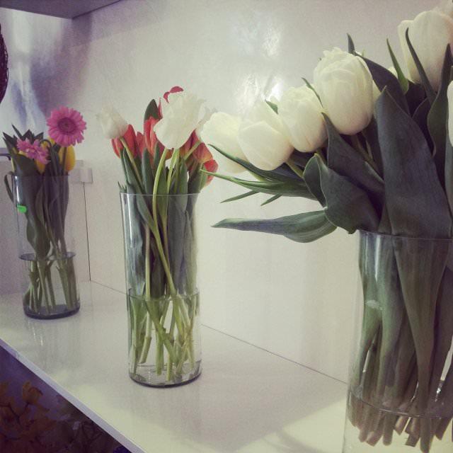 floraria florista (8)